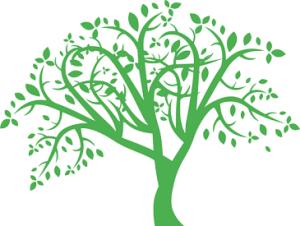 Les compétences de vie : notions, enjeux et approches