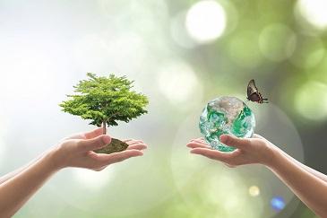 Eduquer au développement durable en français