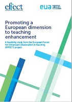 Promoting a European dimension to teaching enhancement: a feasibility study from the Europeean forum for enhanced collaboration in teaching (EFFECT) project