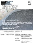 Les gestes professionnels des enseignants de disciplines dites non linguistiques dans trois établissements à dispositif d'enseignement bilingue français-arabe en Egypte. Tome 1 (thèse de doctorat)