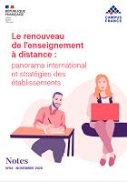 Le renouveau de l'enseignement à distance : panorama internationalet stratégies des établissements