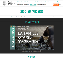 Zoo en vidéos