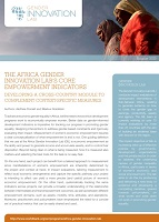 The Africa gender innovation lab's core empowerment indicators : developing a cross-country module to complement context-specific measures