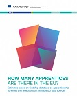 How many apprentices are there in the EU? Estimates based on Cedefop database on apprenticeship schemes and reflections on available EU data sources