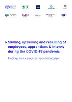 Skilling, upskilling and reskilling of employees, apprentices and in terns during the COVID-19 pandemic: findings from a global survey of enterprises