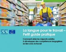 La langue pour le travail : petit guide pratique : comment aider les migrants adultes à développer des compétences langagières en lien avec le travail