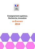 http://cache.media.enseignementsup-recherche.gouv.fr/file/Statistiques_et_analyses/14/7/chiffres_cles_ESRI_2018_1027147.pdf - URL