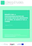 http://www.cereq.fr/index.php/content/download/22668/194062/file/CETUDES-21.pdf - URL